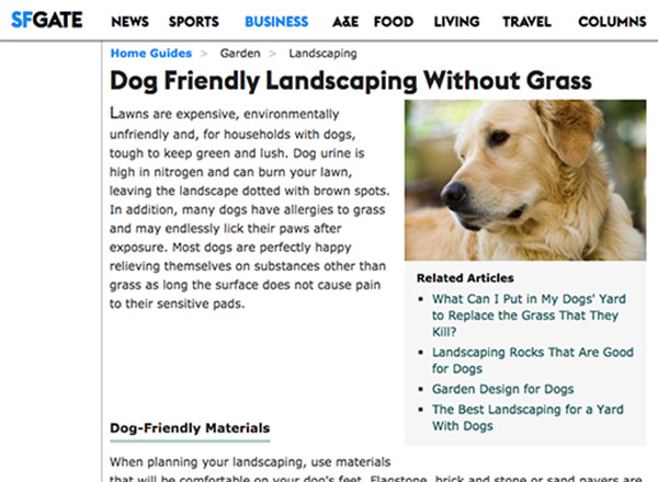 Dog Friendly Landscaping